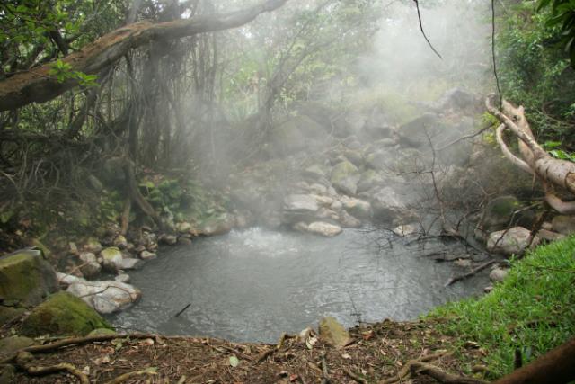 Mud Pot Rincon de la Vieja