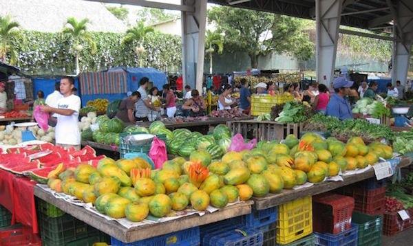 alajuela-costa-rica-mangoes