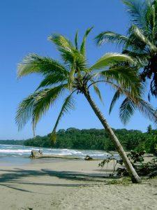 Costa Rica in January Sunny Beaches