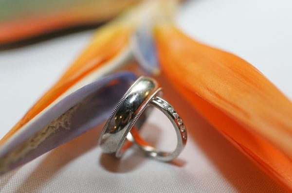 Costa Rica Destination Wedding (Rings)