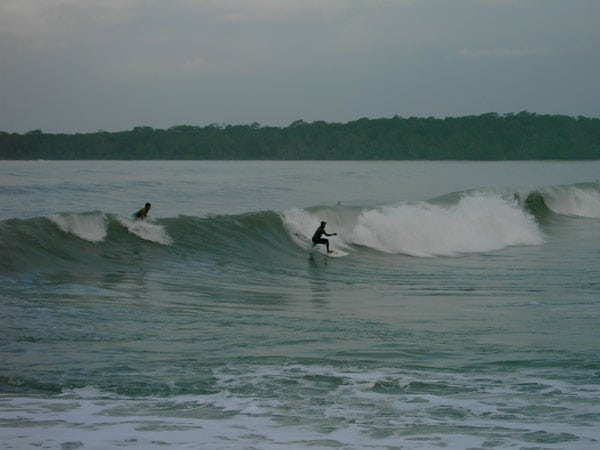 Enjoy Surfing on a Costa Rica Rainforest Tour
