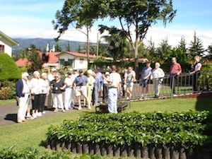 Doka Estate Costa Rica Coffee Plantation Tour