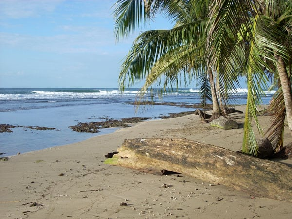 Drake's Bay beaches in Costa Rica