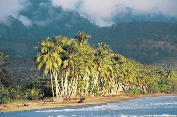 Beaches of Drake Bay | Remote Costa Rica Family Adventure Vacation