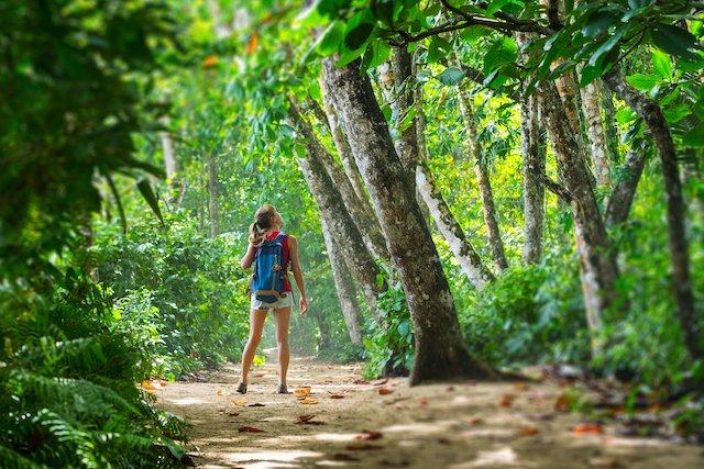 tropical-hiking-cahuita-costa-rica